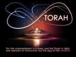 torah light